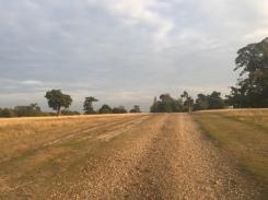 Knole Park, knole house, Sevenoaks, Kent, England, UK, running, fitness, headspace, exercise, autumn, national trust, deer, rutting season, travel, travelling