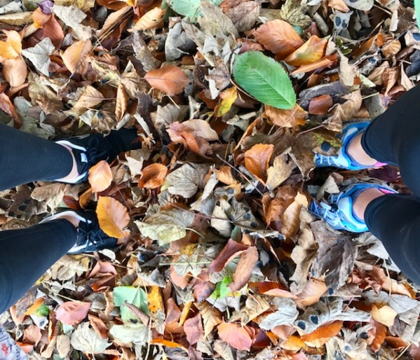 autumn, fall, seasons, SAD, colour, light, exercise, running, walking, nature, outdoors, travel, travelbug, wanderlust, family travel, home, wanderlust, travelogue