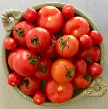 Market fresh tomatoes