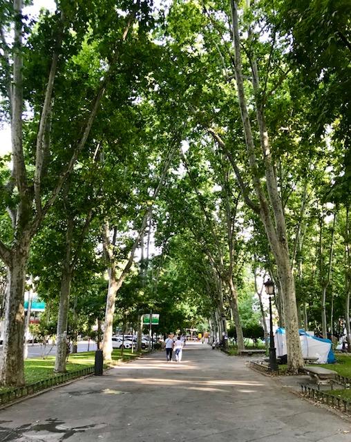 Madrid, Spain, España, city, Europe, Summer, running, park