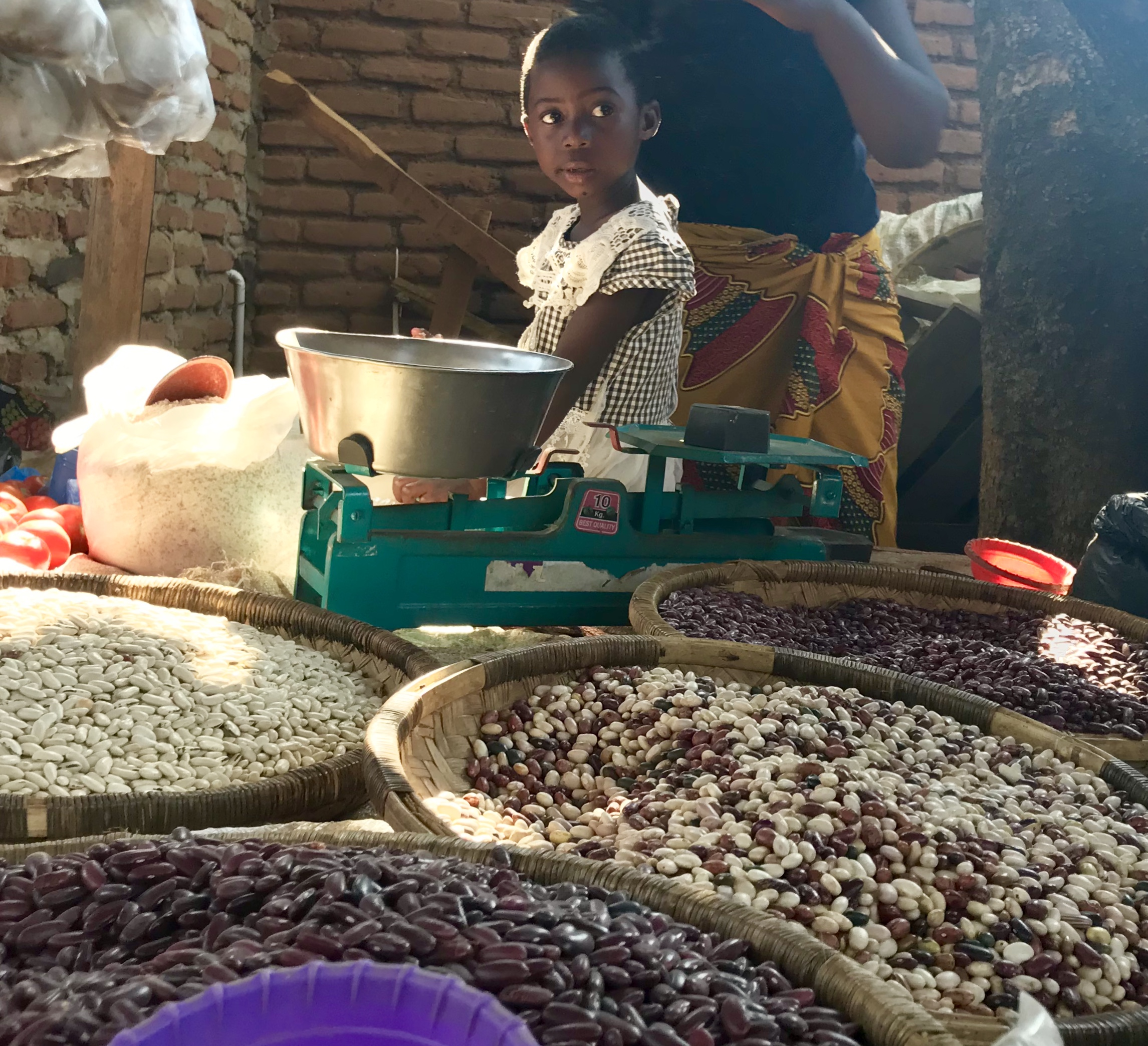 #malawi #africa #food #pulses #beans #nutrition #sustainability #cooking