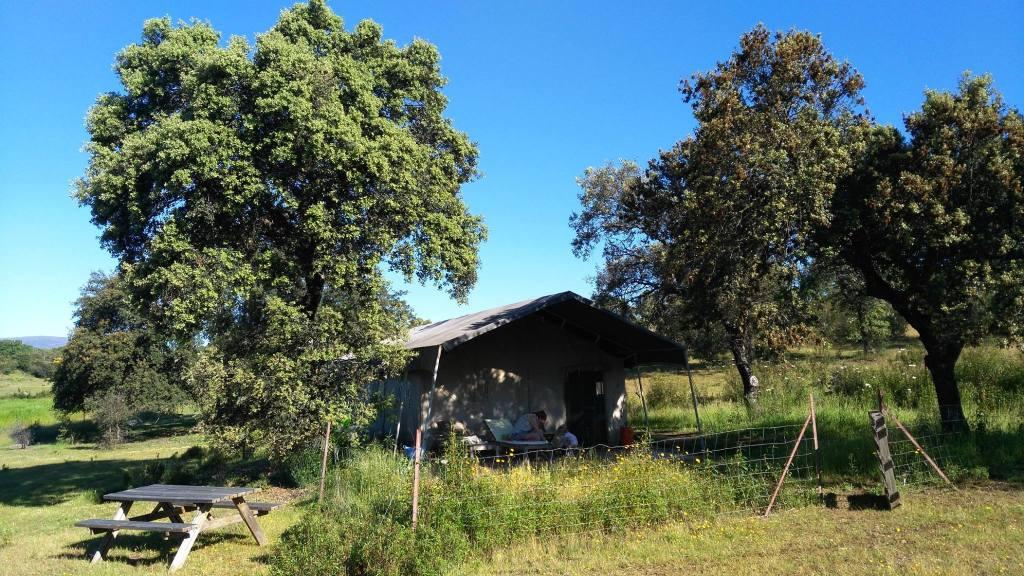 Finca las Cañadas, finca, farm, self-sufficiency, glamping, Spain, Extremadura